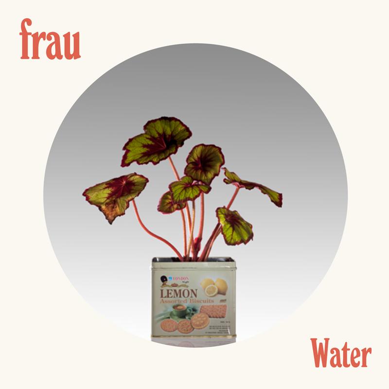Frau - Water image