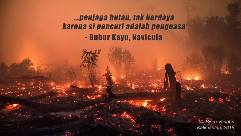 Bubur_Kayu_Navicula