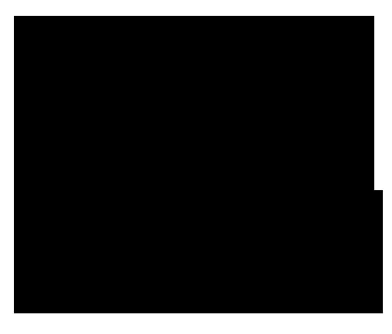 circarama logo copy