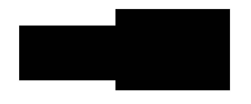 mataharibisu-band-member