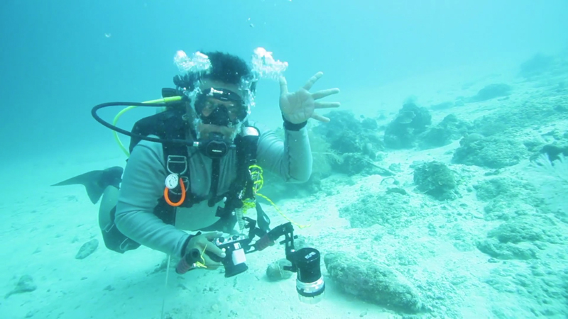 Erix Diving